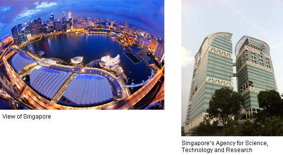 Sustainable Urban Development Using Big Data (Singapore)