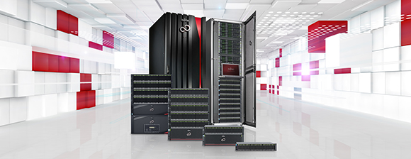 Disk Storage Systems