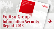 Informatin Security Report 2013