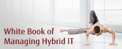 Download the White Book of Managing Hybrid IT