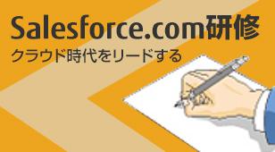 クラウド時代をリードするsalesforce.com研修 詳細を見る