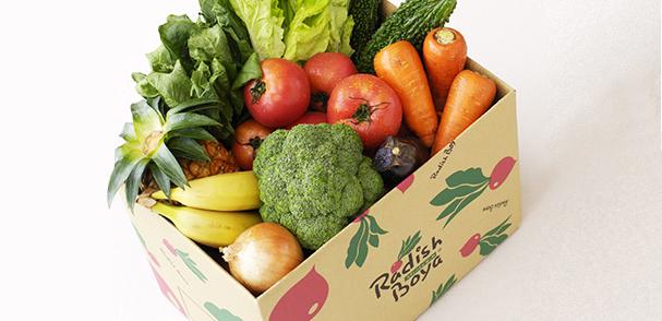 有機・低農薬野菜 イメージ