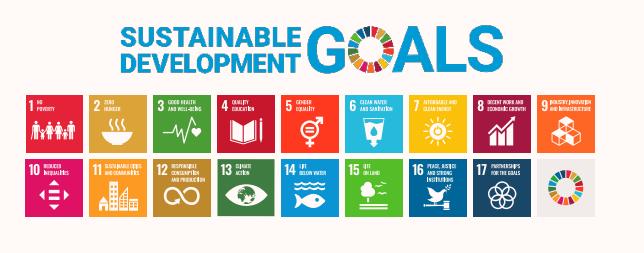Graphic showing the 17 UN SDGs