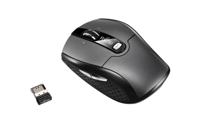 Mouse WI610