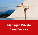 Managed Private Cloud Service