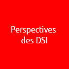 vcs_perspectives_dsi