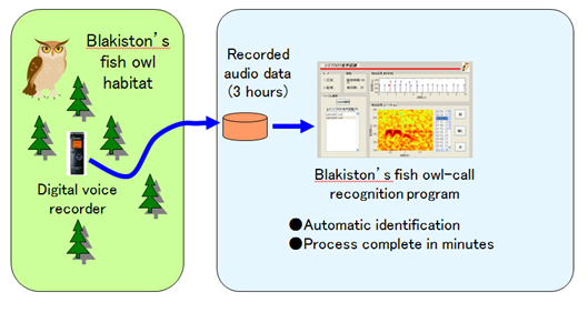 Program for automatically extracting the call of the Blakiston's fish owl