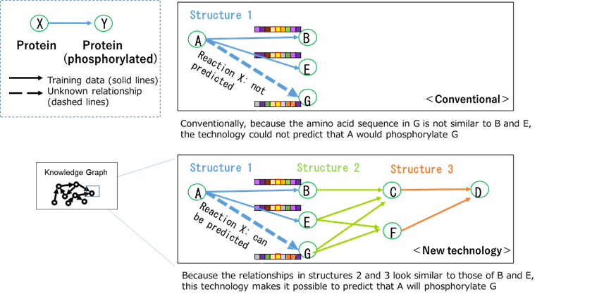 Figure 2: Example of predicting phosphorylation reactions using knowledge graphs