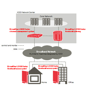Figure: Overview of the femtocell system