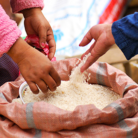 Transforming the $450 billion rice trade