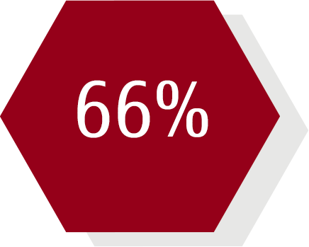 66% hexagon
