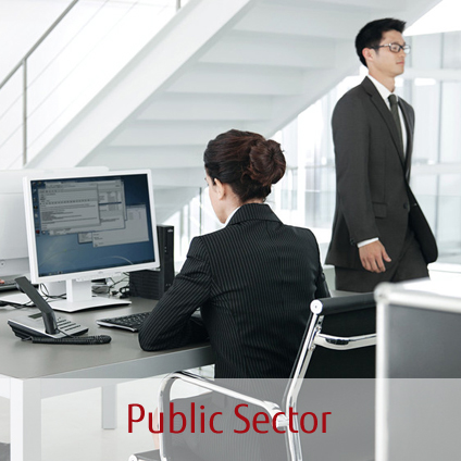Industries - Public Sector