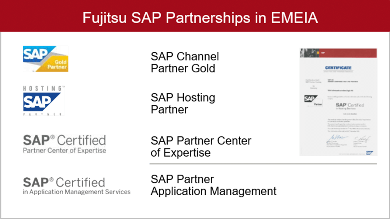 sap partnerships emeia
