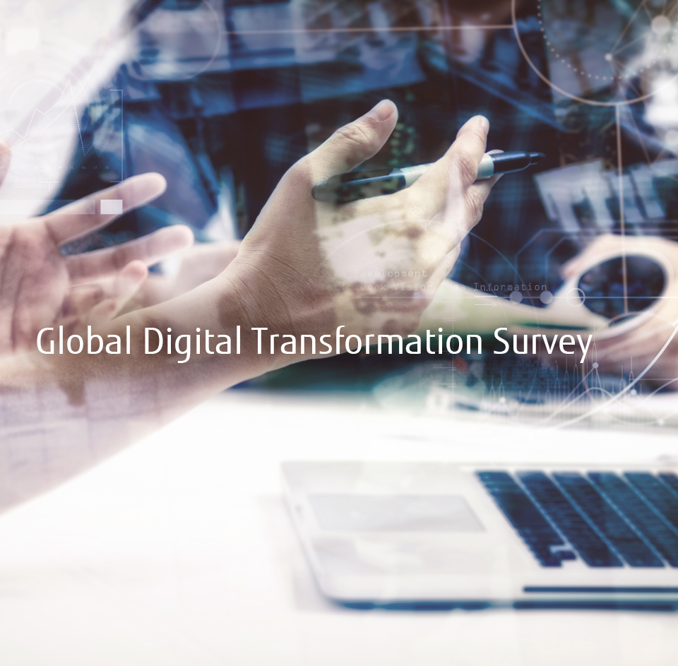 Global Digital Transformation Survey
