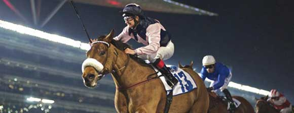 A floodlit horse race at night
