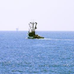 Photograph of a fishing boat at sea