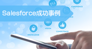 Salesforce成功事例