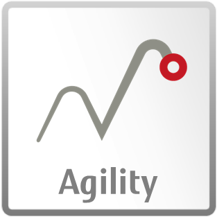 Traditional Values - Agility