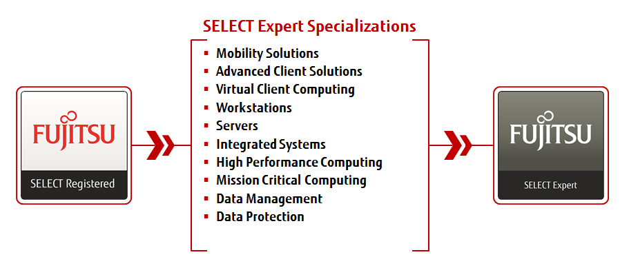 Expert specializations