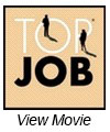 Top Job award 2011