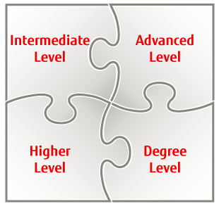Jigsaw of apprentice levels
